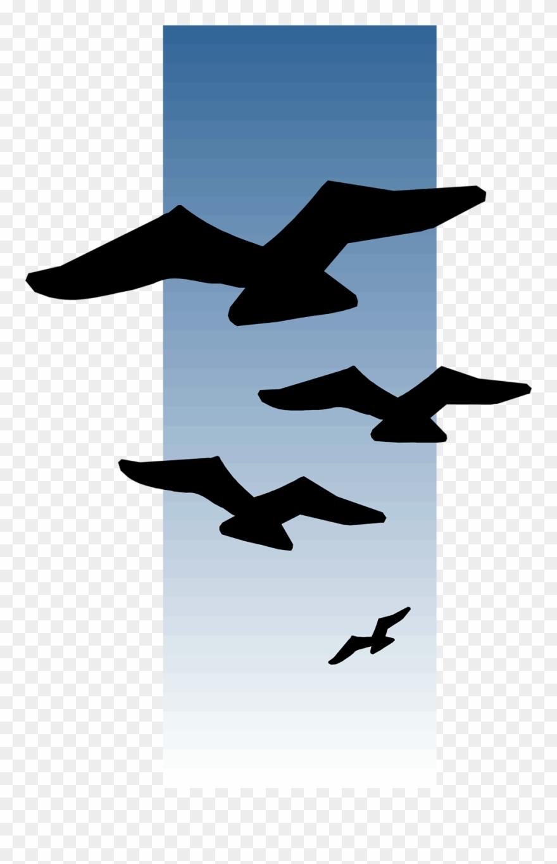 Seagull Clipart Bird Fly.