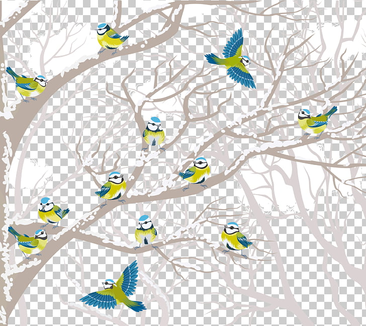 Bird Tree Winter , Creative winter birds PNG clipart.
