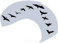 Migrating birds clipart.