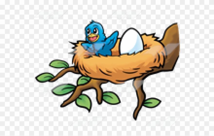 Nest Clipart Baby Bird.