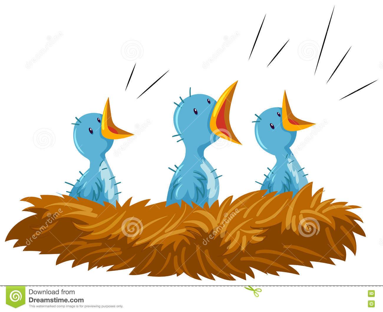 Clip Art Baby Birds Nest Stock Illustrations.