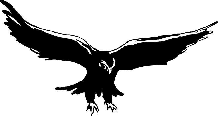 Best Falcon Clip Art #15444.