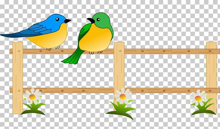 Flower garden , Flower Garden s, two birds on fence.