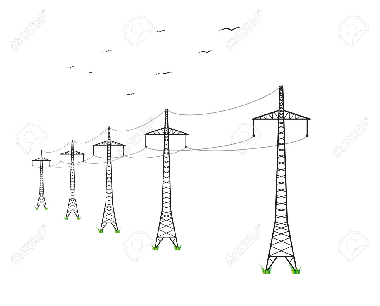 High Voltage Power Lines And Birds On White Background Royalty.