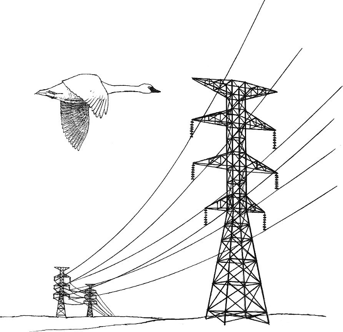 Power Line Clipart.