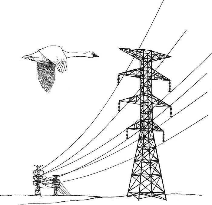 Power Line Clipart.