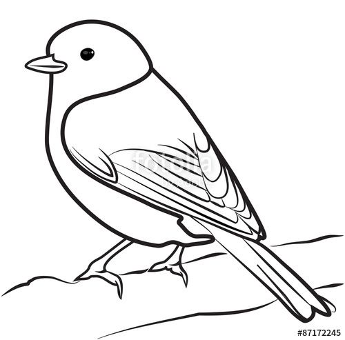 Collection of Bird clipart.