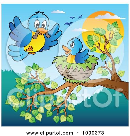 Bird Nest In Tree Clipart#1913469.