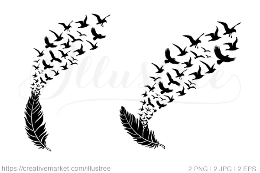 Feather with flying birds, vector.