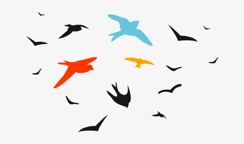 Birds Vector Png.