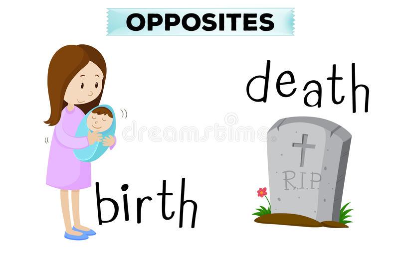 Birth Clipart Stock Illustrations.