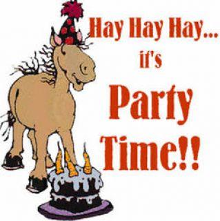 Happy birthday all New Zealand horses!!! :: Harnesslink.
