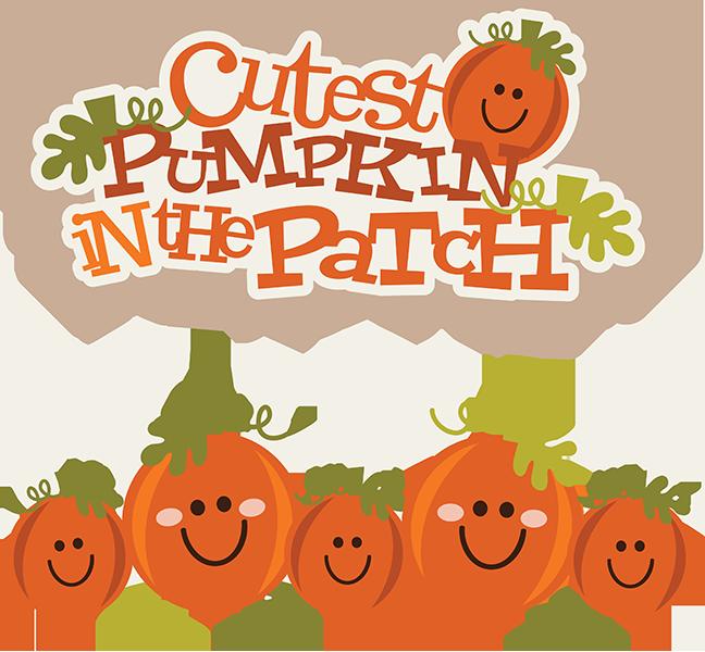 Cutest Pumpkin In The Patch SVG pumpkin clipart cute pumpkin.