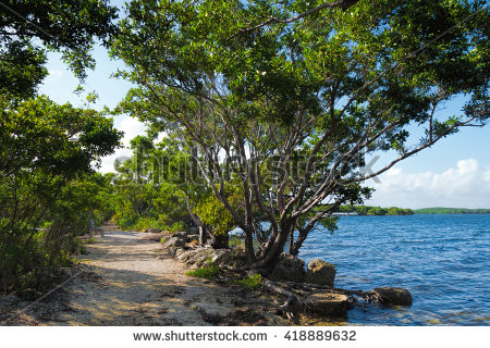 Biscayne National Park Stock Photos, Royalty.