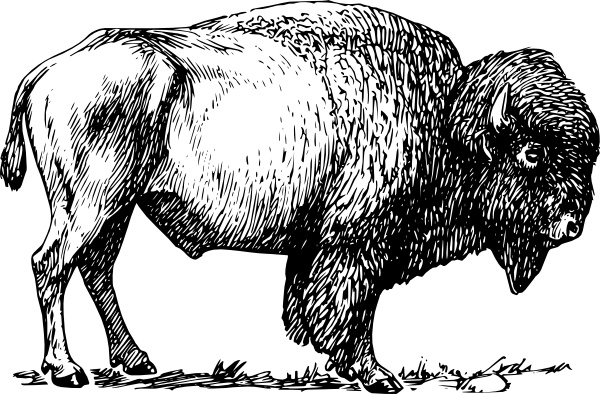 Bison clip art Free vector in Open office drawing svg ( .svg.