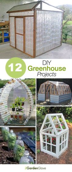 Greenhouse From Old Windows.