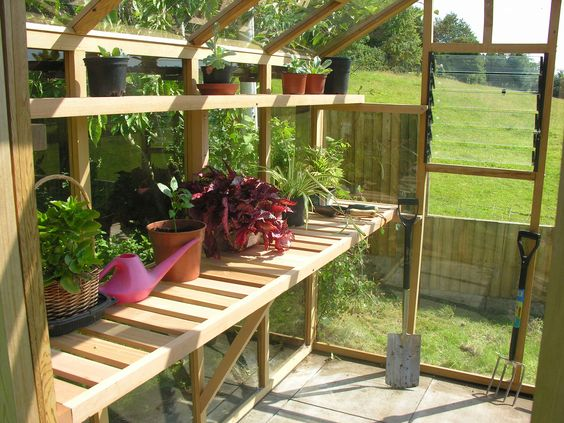 greenhouse shelves love the upper shelf.
