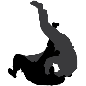 Brazilian Jiu Jitsu Barrie Ontario.