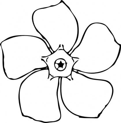 Immergrün Blumen Draufsicht ClipArt cliparts, kostenlose clipart.