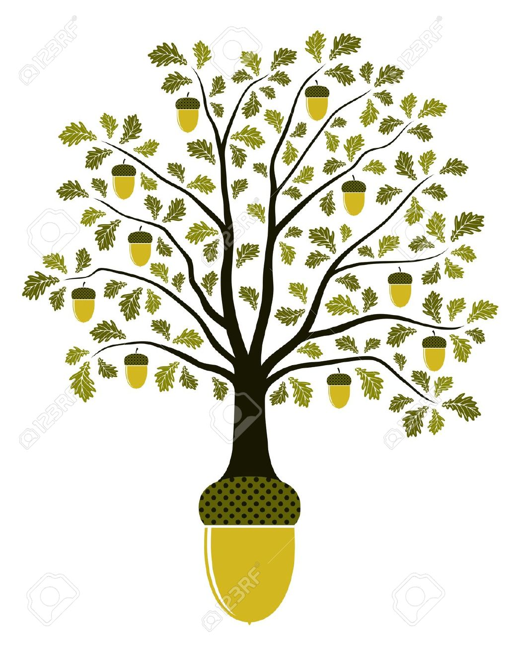 White oak tree black and white clipart with acorns.