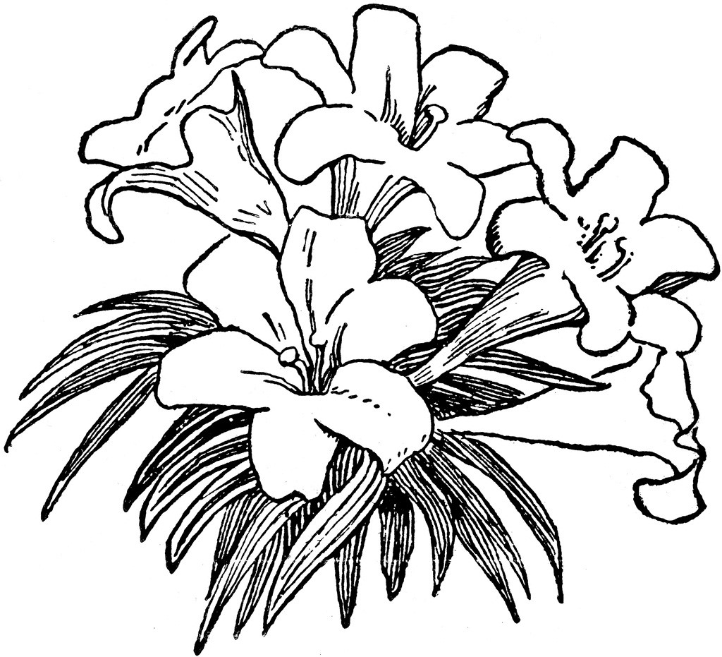 Free clipart easter flowers black and white.