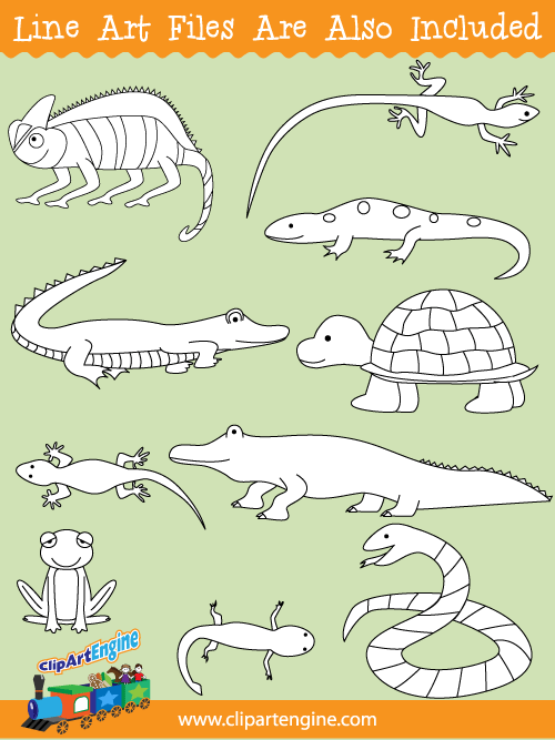 Reptiles and Amphibians Clip Art Collection for Commercial Use.