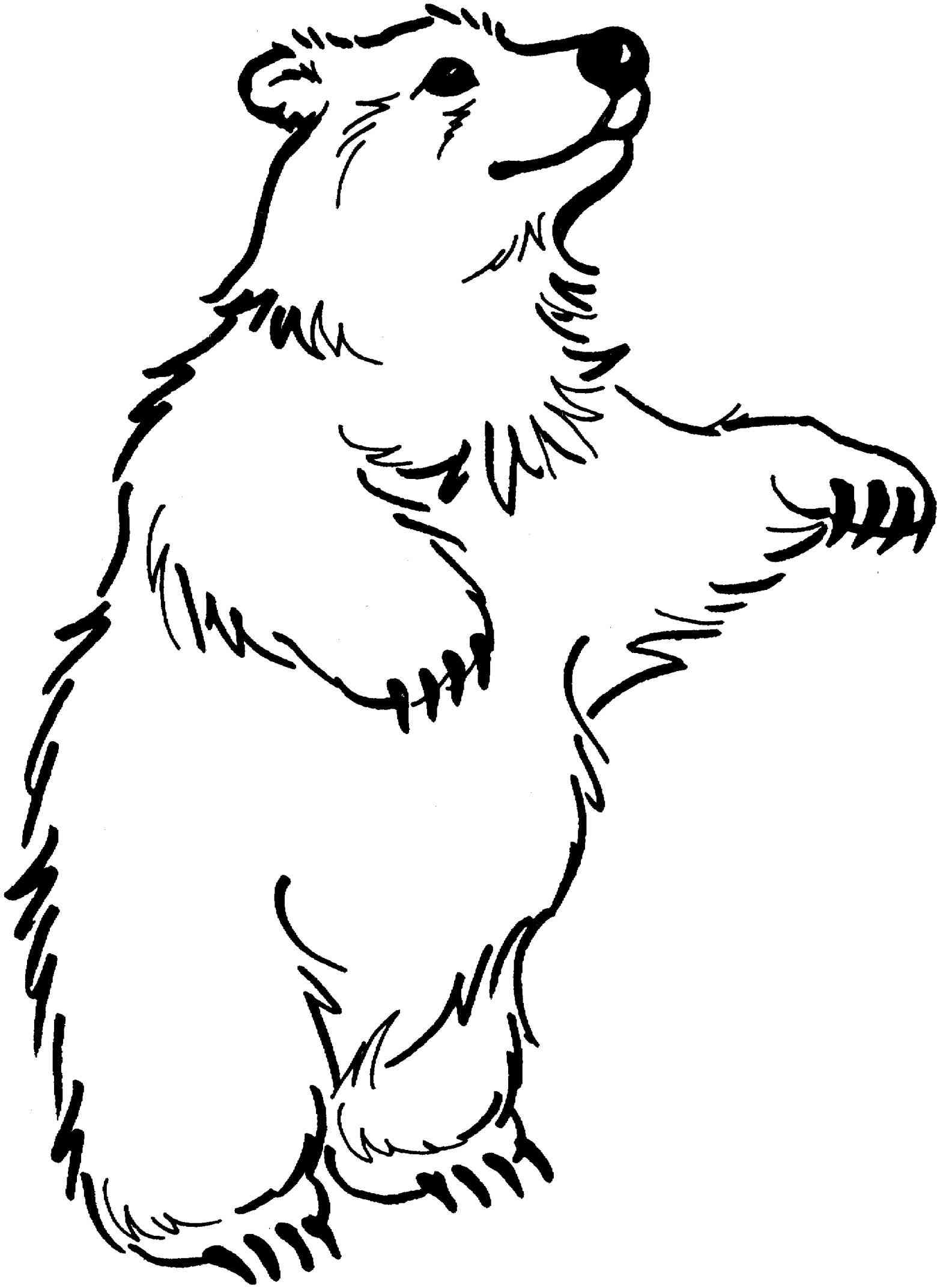 Bear black and white polar bear clip art black and white free.