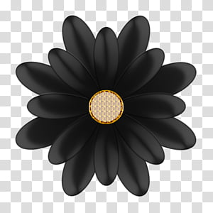 Decorative flowerses in, gold and black flower art.