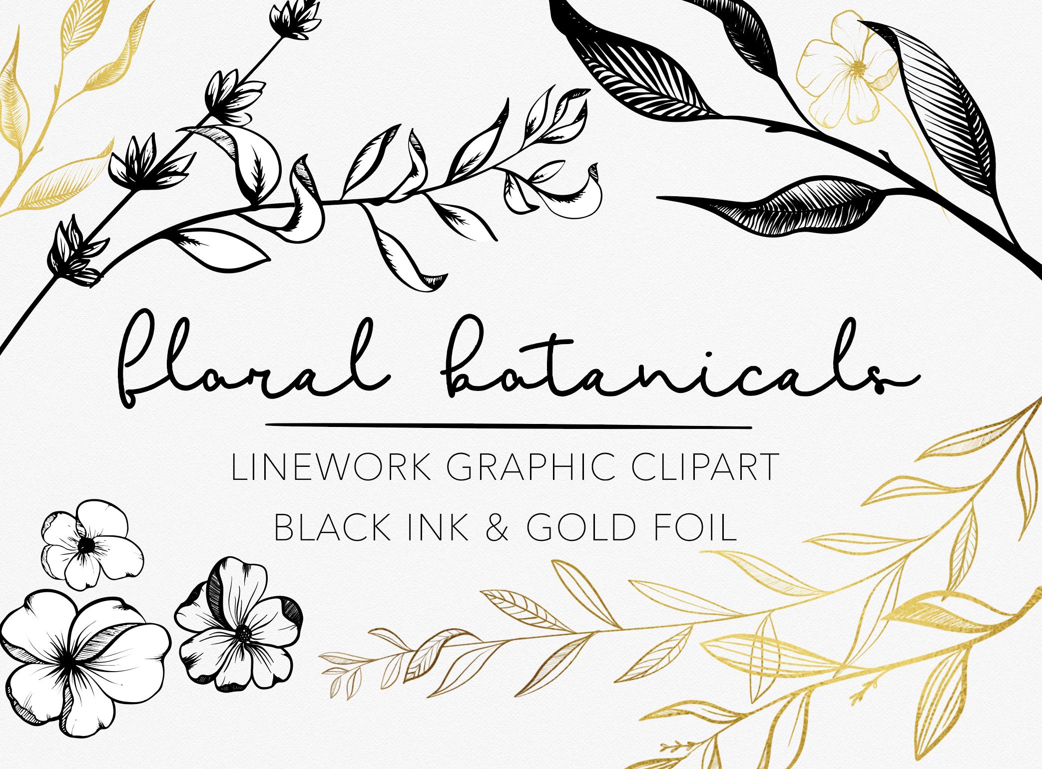 Black Ink and Gold Foil Botanical Floral Linework Graphics.