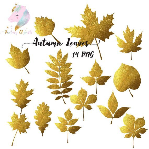 Autumn leaves, gold foil clipart, golden leaf, fall leaves.
