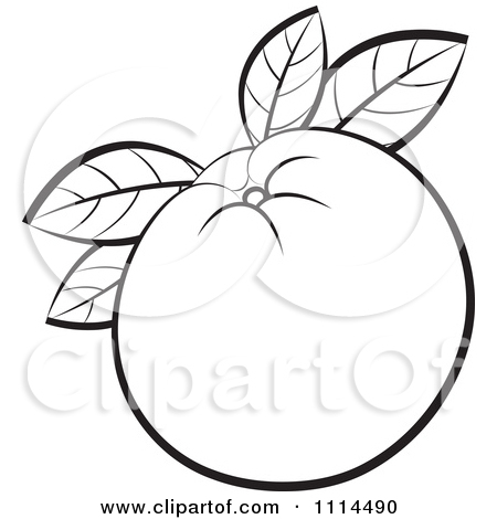 Clipart of a Black and White Hand Holding a Navel Orange.
