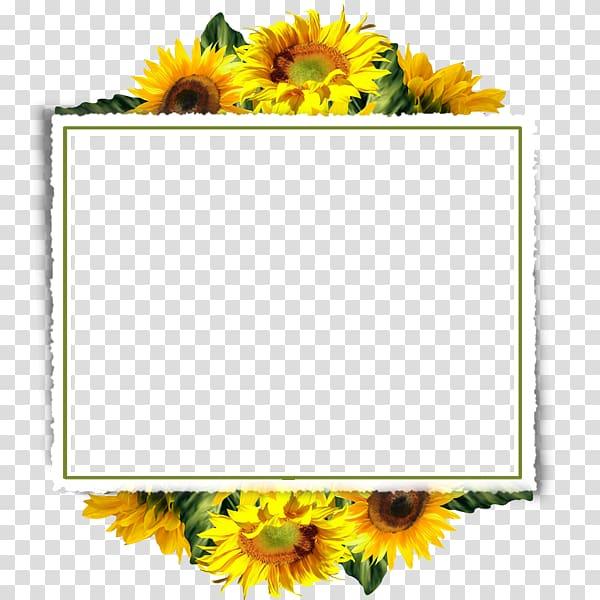 Yellow, black, and orange floral frame , , Sunflower Border.