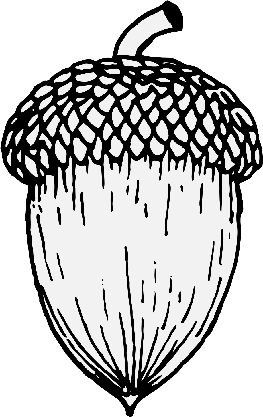 Clip Art Royalty Free Library Acorn Black And White.