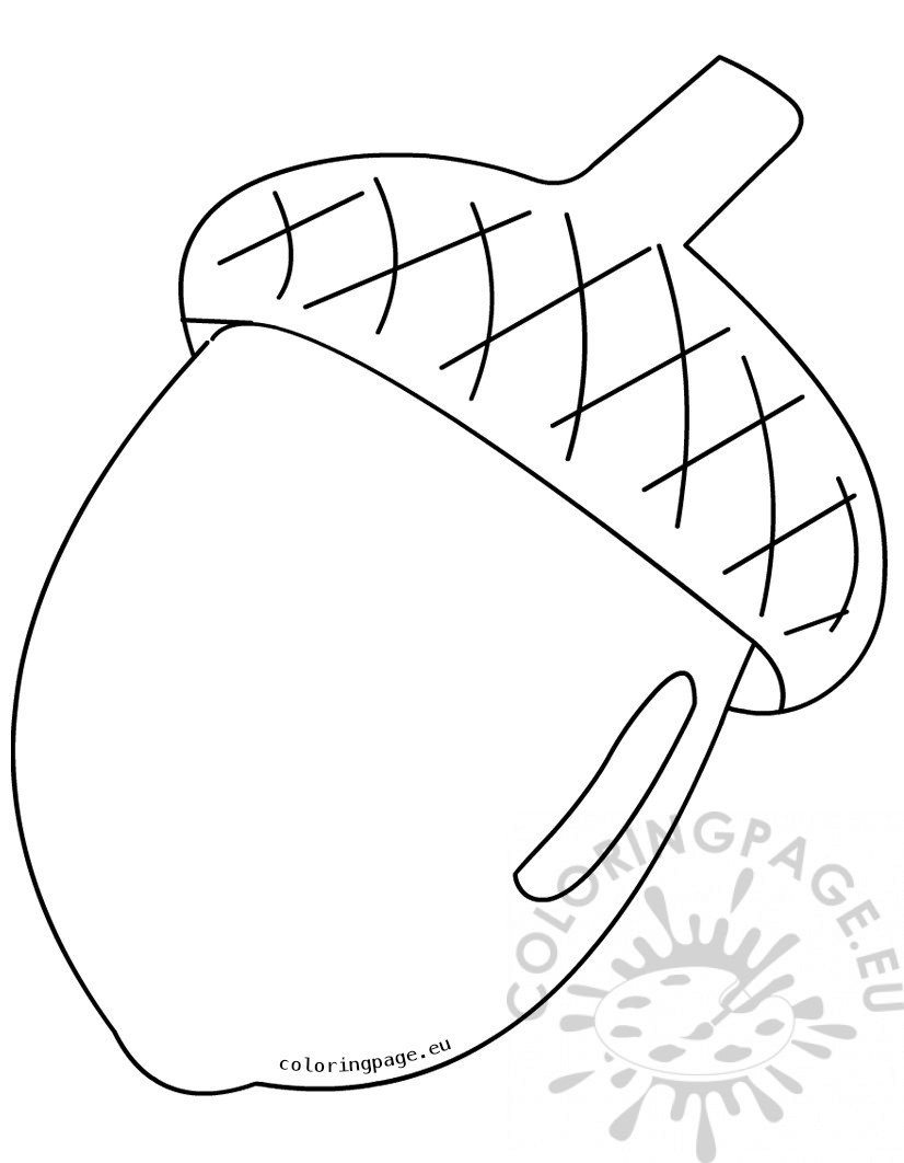 Large acorn Clipart Black And White.