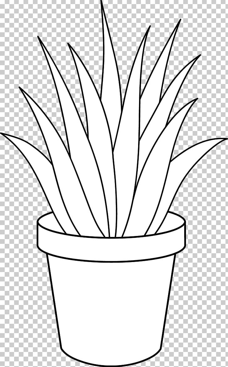 Aloe Vera Houseplant Black And White PNG, Clipart, Agave.