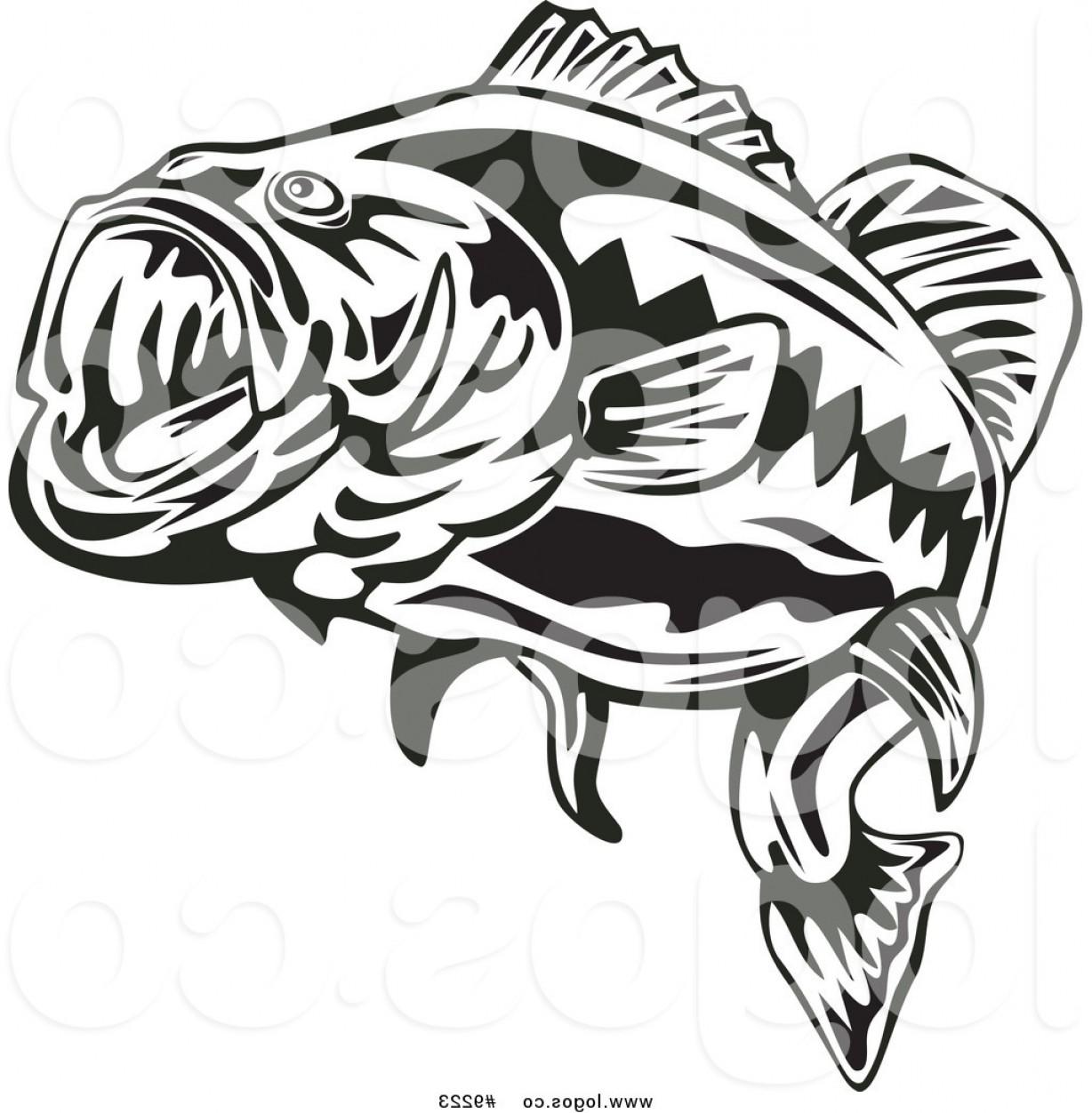 Bass Vector Art.