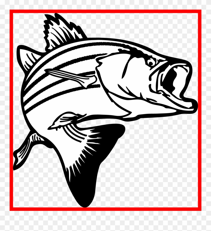 Banner Royalty Free Stock Bass Clipart Black And White.