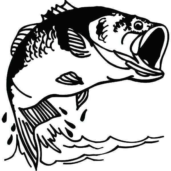 Bass Clipart Black And White (91+ images in Collection) Page 1.