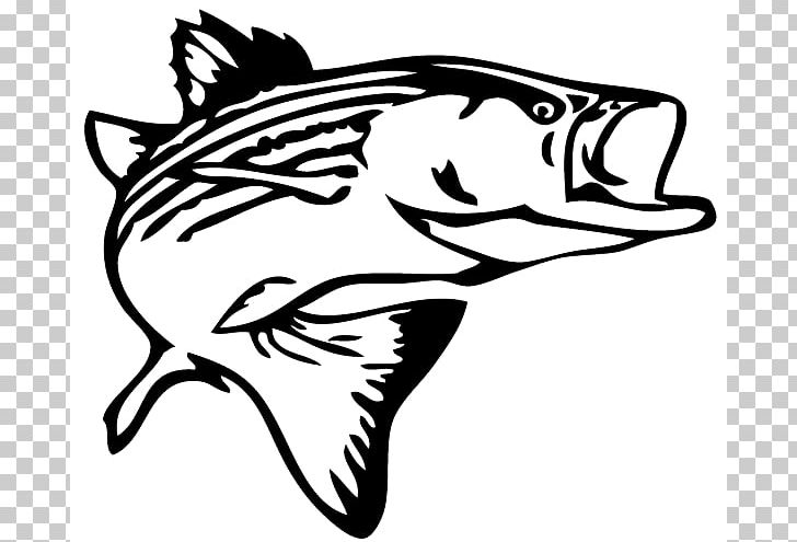 Striped Bass Fishing Decal PNG, Clipart, Artwork, Bass, Bass Fishing.