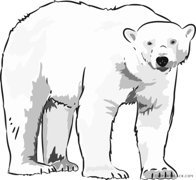 Polar bear clipart black and white 1 » Clipart Station.