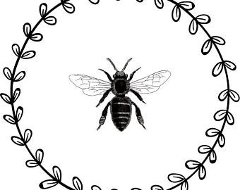 Black and white bee.