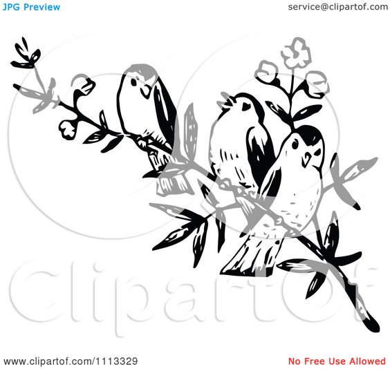 Clipart Three Vintage Black And White Birds On A Branch.