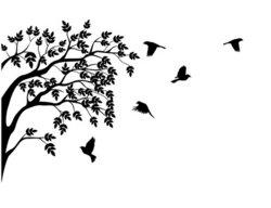 Tree And Bird Silhouette.