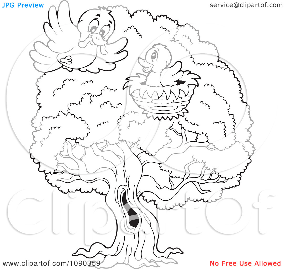 Black And White Birds On Tree Clipart.