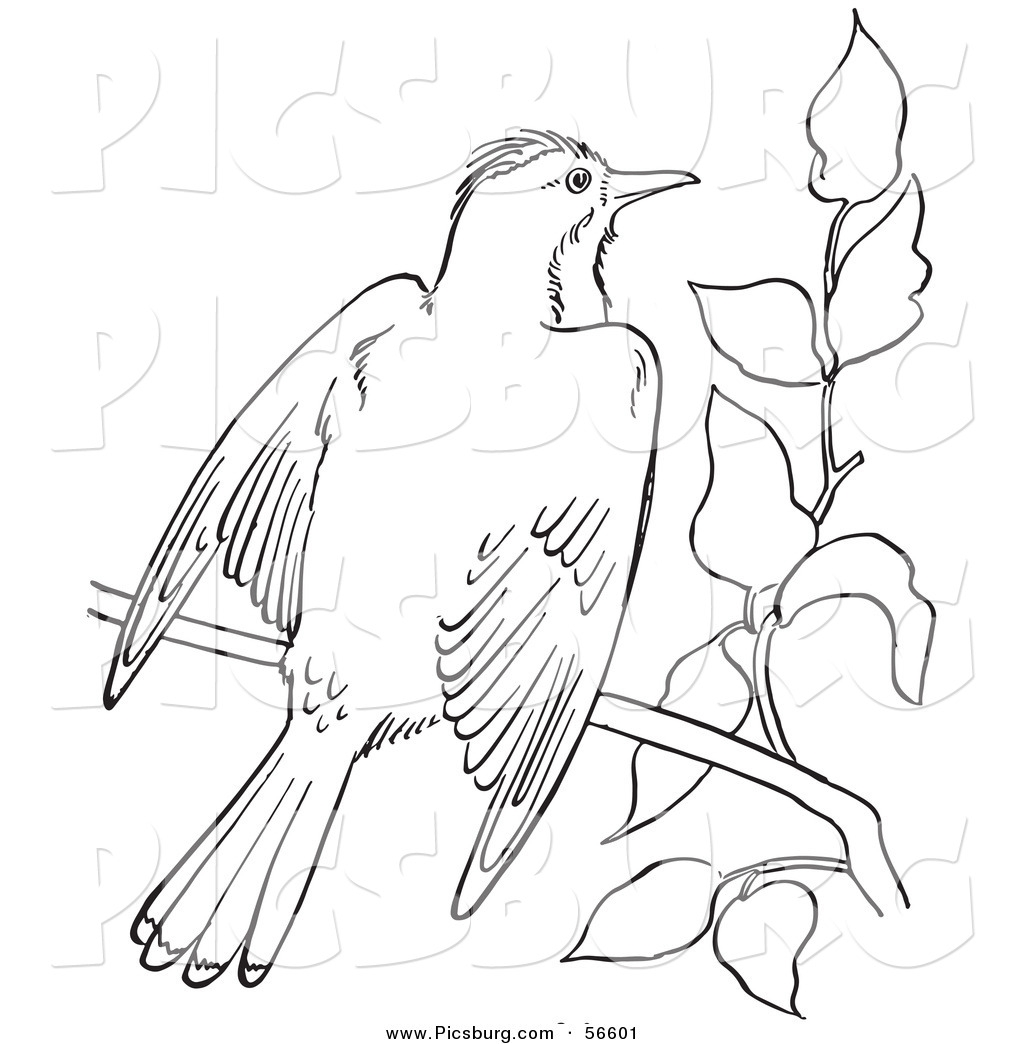 Similiar Glitter Clip Art Bird Of Paradise Keywords.