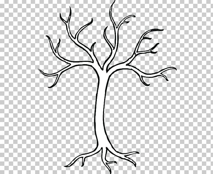 Tree Trunk Drawing PNG, Clipart, Area, Black And White.