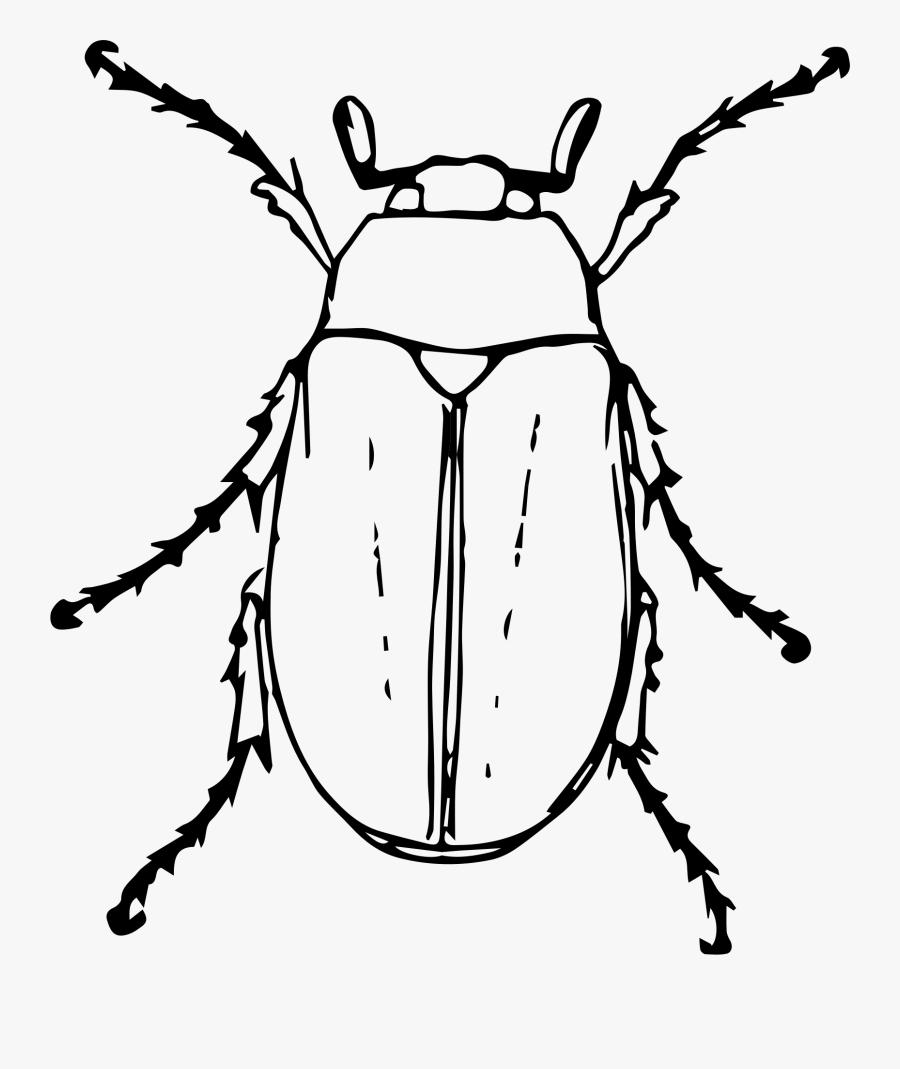 Clip Art June Bug Clipart.