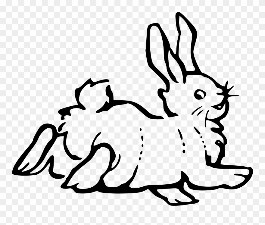 Rabbit Black And White Bunny Clipart Black And White.