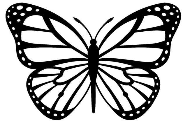 butterfly black Monarch butterfly clipart black and white pencil.