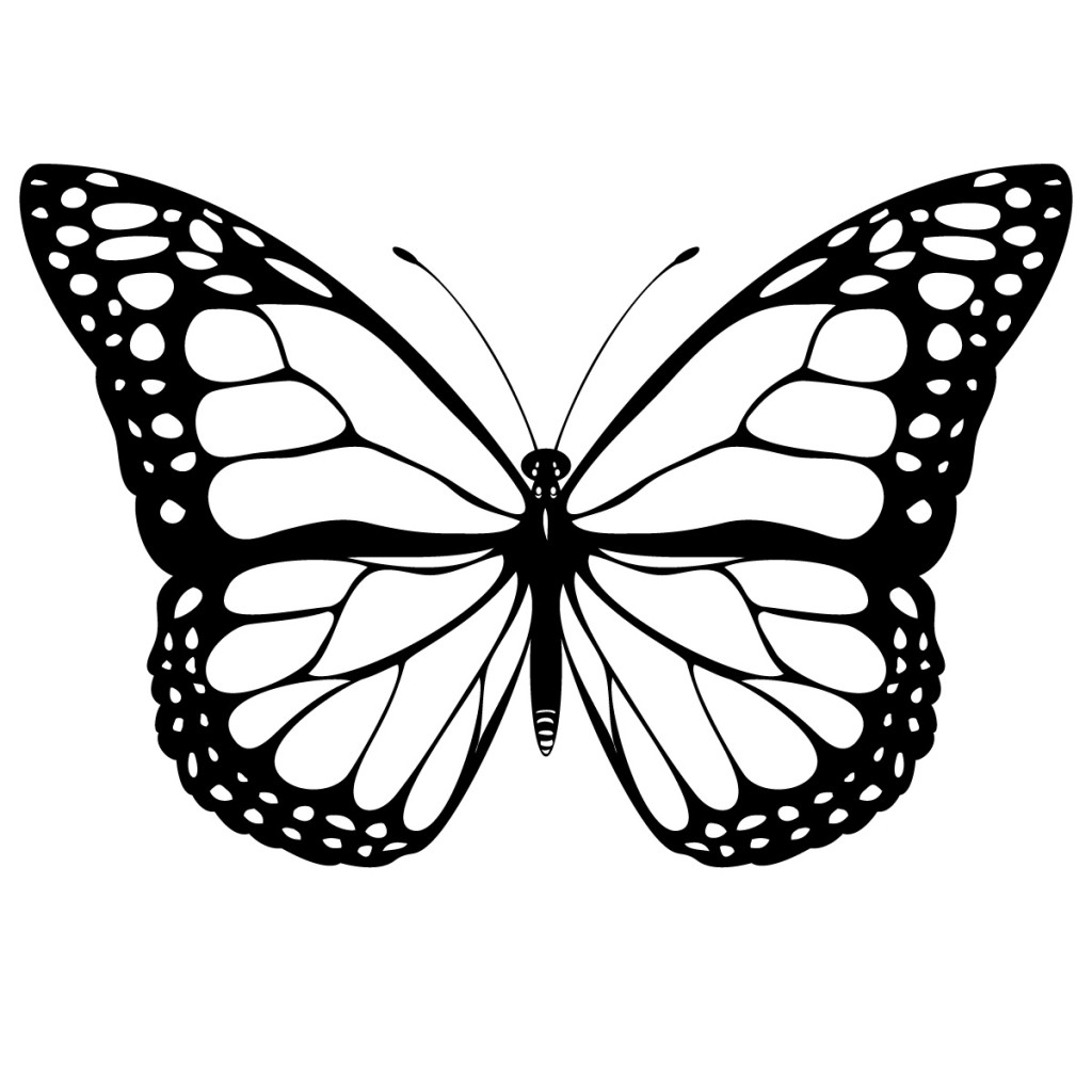 Free Black And White Butterfly, Download Free Clip Art, Free Clip.
